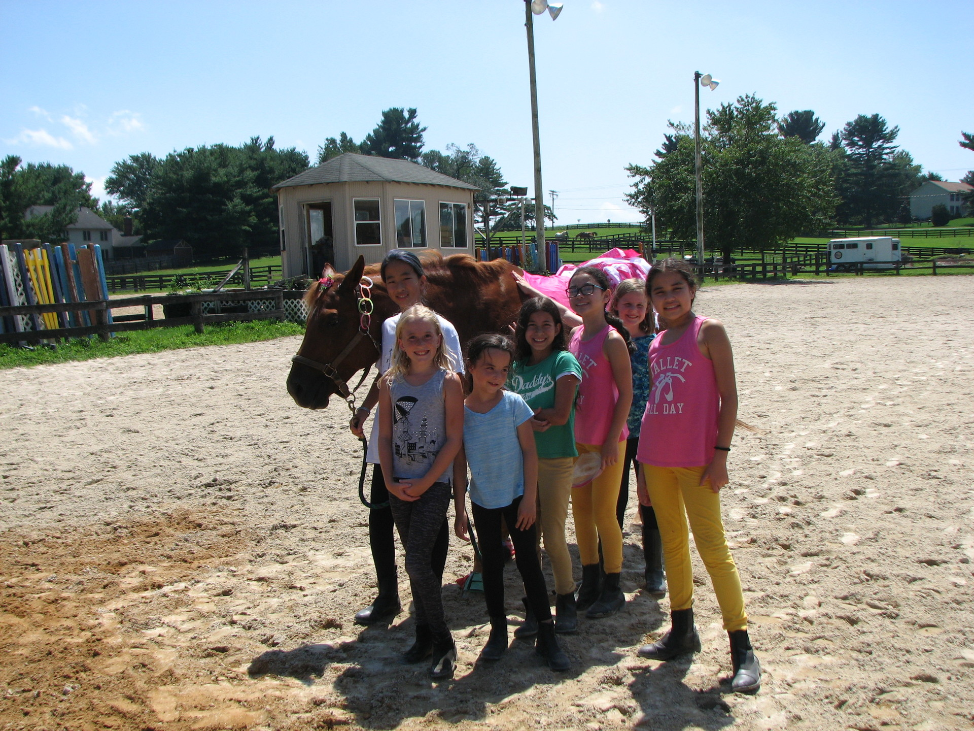 Horsemanship Camp Session 4