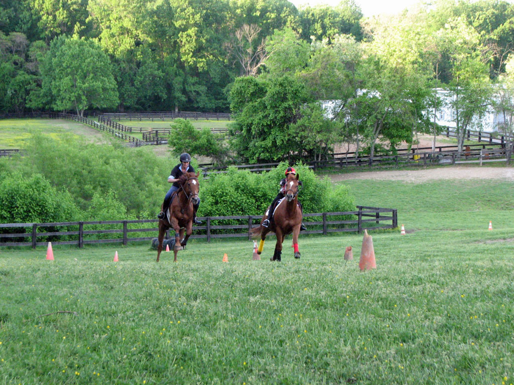Preakness Party at Columbia Horse Center